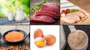 Biologische Wertigkeit: Maßstab für die Qualität von Protein