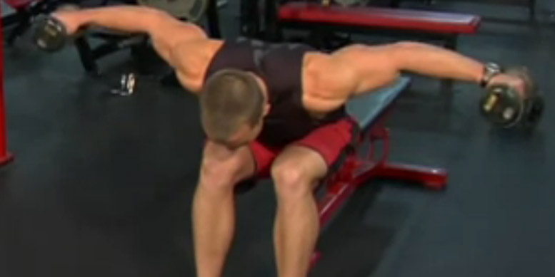 Hintere Schulter - die besten Übungen | Uebungen.ws
